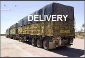 anayansi gamboa delivery