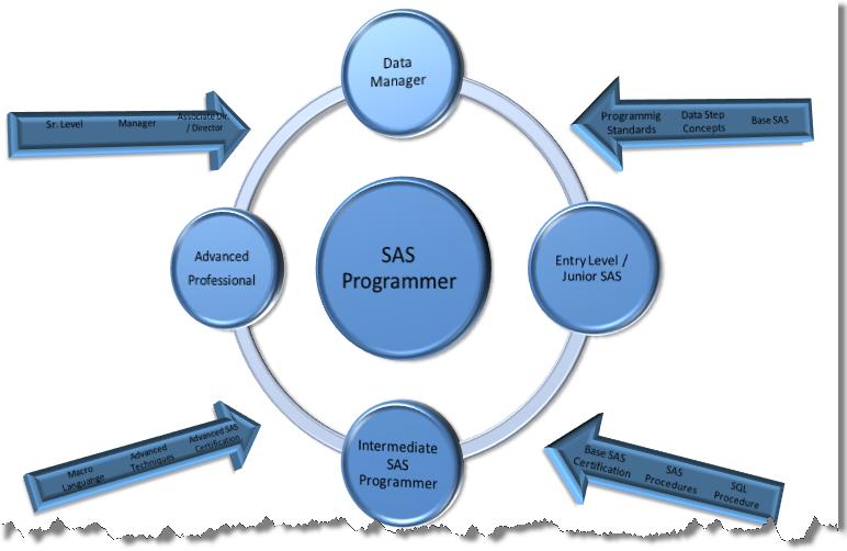 from non sas programmer to sas programmer edc developer - Clinical Database Programmer