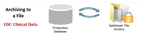 Data Management Plan – Database Archive